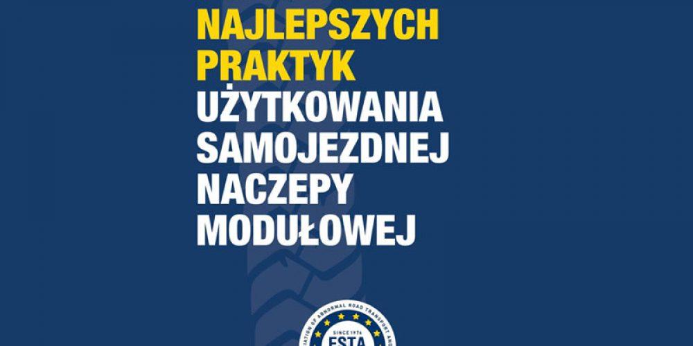Polska wersja SPMT Guide już dostępna!